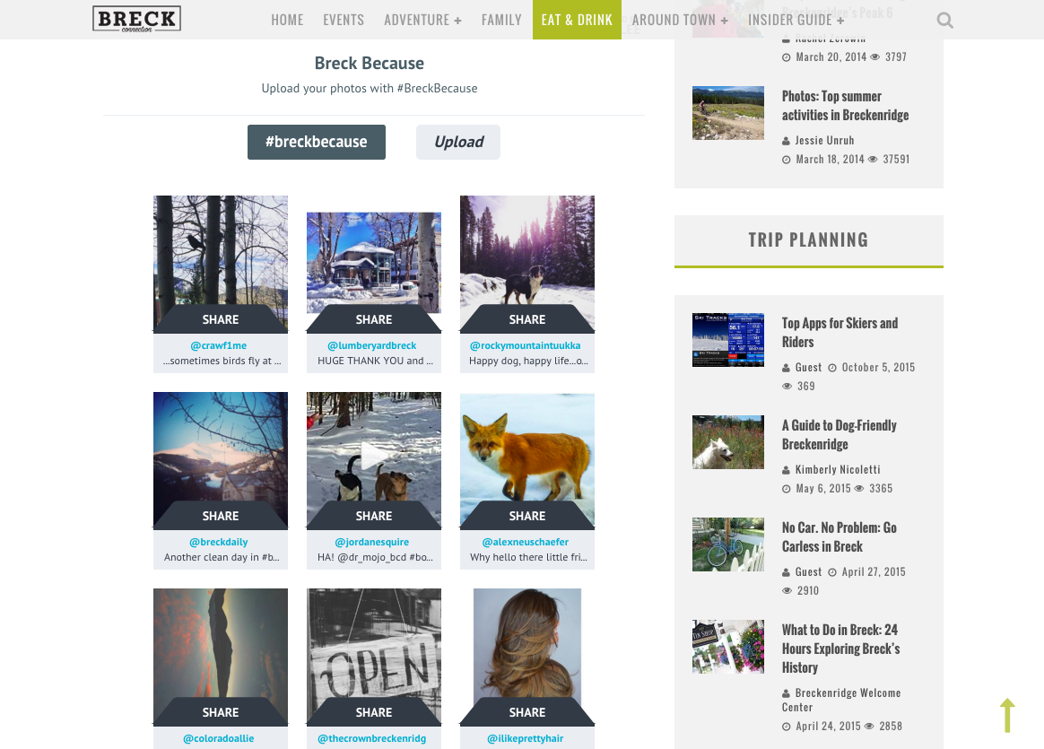 Breck Social Media Ugc Example
