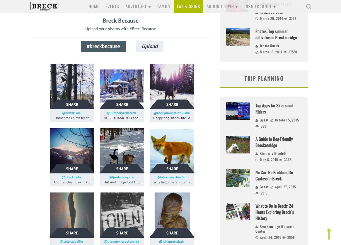 Breck  Social Media Ugc Example